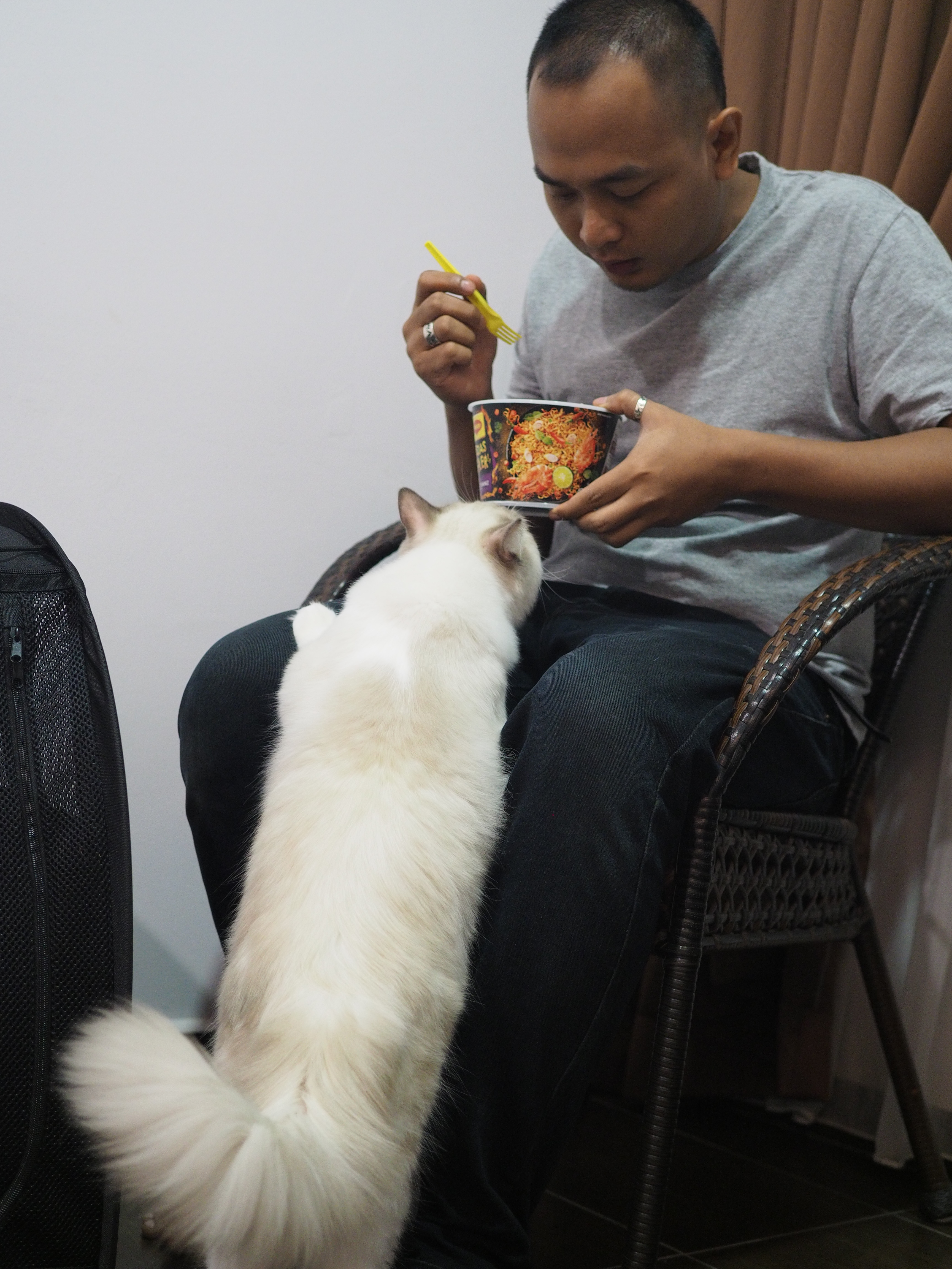 Ucool wants some spicy noodle too Uncle Jiimy!