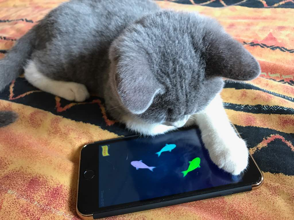 Ares is playing the fish game on the phone